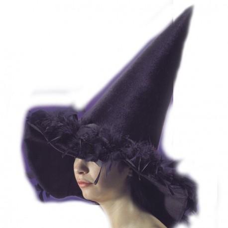 chapeau-de-sorcier-sorciere-plumes-noires