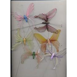 6-papillons-transparents-colores-sur-pic