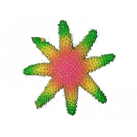 etoile-de-mer-en-caoutchouc-vert-jaune-et-rose