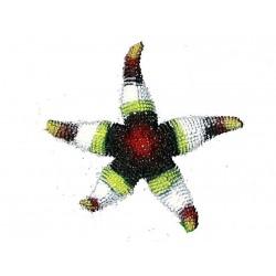 etoile-de-mer-en-caoutchouc-marron-jaune-blanche