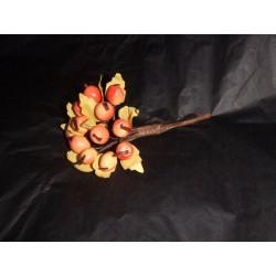 Bouquet de 12 petits fruits mûrs orangé