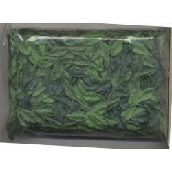 sachet-de-petites-feuilles-nuances-de-vert