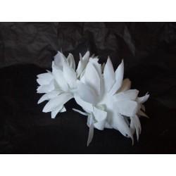 elastique-orne-de-fleurs-blanches-pointues-et-perle