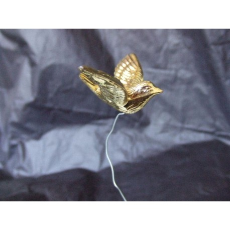 1-colombe-doree-sur-pic
