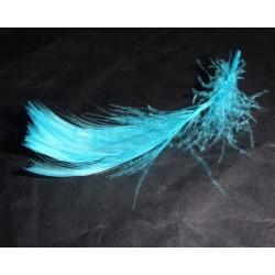 sachet-de-12-gr-de-plumes-turquoise-plumes-veritables