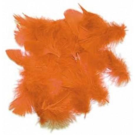 sachet-de-20-gr-de-plumes-orange-plumes-veritables