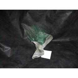 pince-bruxelles-verte