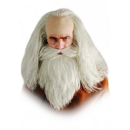 perruque-et-barbe-druide-ou-mage-magicien
