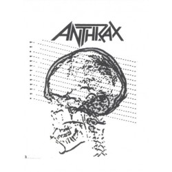 2-tatouages-temporaires-motifs-anthrax-cranes-tatoo