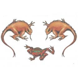 3-tatouages-temporaires-motifs-reptiles-colores