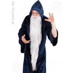 longue-barbe-blanche-mechee-de-gris-tres-tres-clair