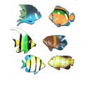 6 petits poissons tropicaux variés en plastique souple