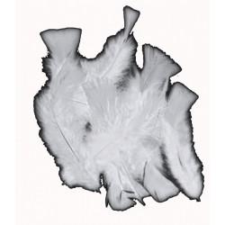 sachet-de-20gr-de-plumes-gris-clair-argente-plumes-veritables