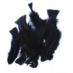 sachet-de-20gr-de-plumes-noires-plumes-veritables
