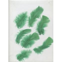 sachet-d-environ-25-plumes-vert-prairie-plumes-veritables