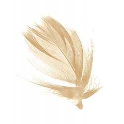 sachet-de-100-gr-de-plumes-ivoire-plumes-veritables