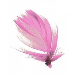 sachet-de-100-gr-de-plumes-rose-ancien-poudre-plumes-veritables