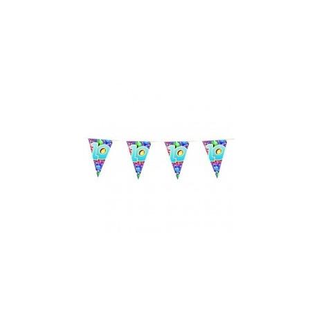 guirlande-n10-fanions-triangulaires-6-metres-colore