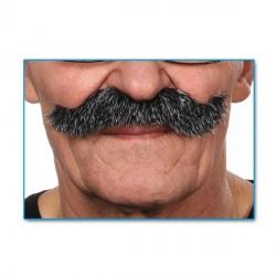 moustache-scoundrel-grisonnante-grand-modele-tres-fournie