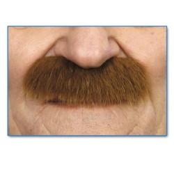 moustache-gent-poils-longs-chatain
