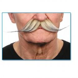 moustache-droite-dite-a-aiguilles-platine-meche-de-noire
