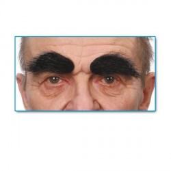 sourcils-noirs-fournis