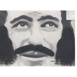 rouflaquettes-noires-poils-longs-avec-moustache-type-brosse-favo