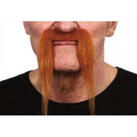 moustache-type-fer-a-cheval-rousse