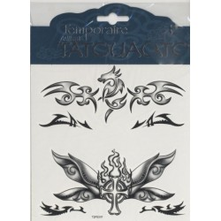 3-tatouages-croix-celte-ailee-en-feu-dragon-stylise