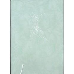 livre-d-or-vert-d-eau-motif-blanc-maries-s-embrassant