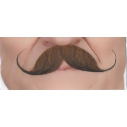 moustache-elegante-chatain-roux-grand-modele