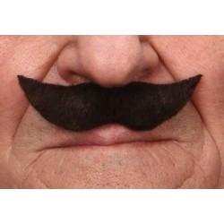 moustache-noire-petites-pointes-relevees