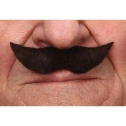 moustache-brun-fonce-petites-pointes-relevees