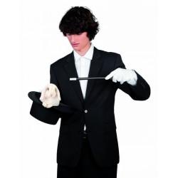 baguette-magique-baguette-de-magicien