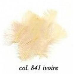 Sachet de 10gr de plumes ivoire plumes véritables