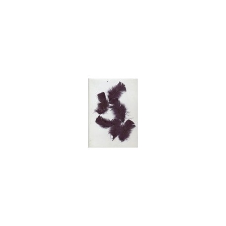 sachet-d-environ-25-plumes-prune-plumes-veritables