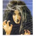 Perruque Vampirella noir et blanc sorcière