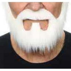 barbe-blanche-en-collier-avec-mouche-et-moustache