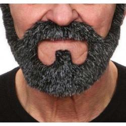 barbe-poivre-et-sel-en-collier-avec-mouche-et-moustache