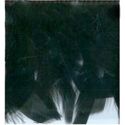 60-cm-de-plumes-noires-sur-ruban-satin-franges