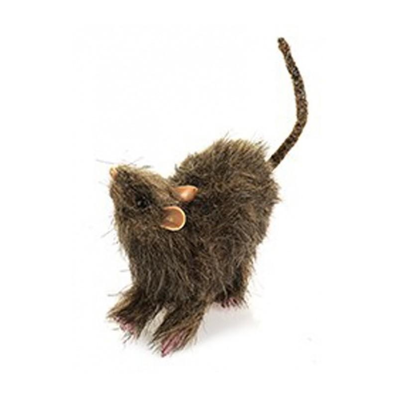 rat peluche pelage tout d coiff gris beige poil hirsute festi fiesta. Black Bedroom Furniture Sets. Home Design Ideas