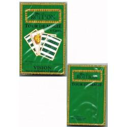 jeu-de-17-cartes-tour-de-magie-le-roi-lion-license-disney
