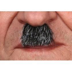 moustache-grise-poivre-et-sel-charlie-chaplin-charlot