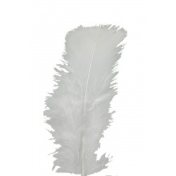 plumes-de-dinde-pieds-plats-rouges-sachet-de-plumes-25-g