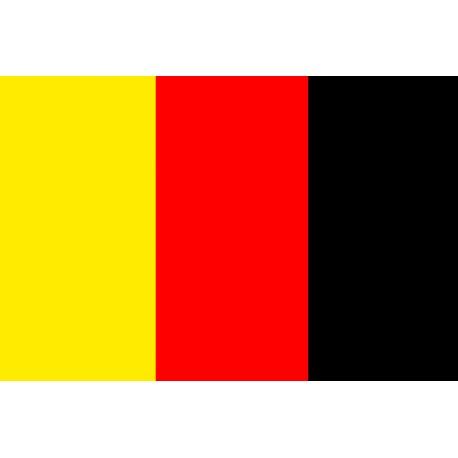 144 cure-dents petits drapeaux jaune rouge et noir