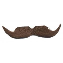 moustache-bureaucrate-chatain