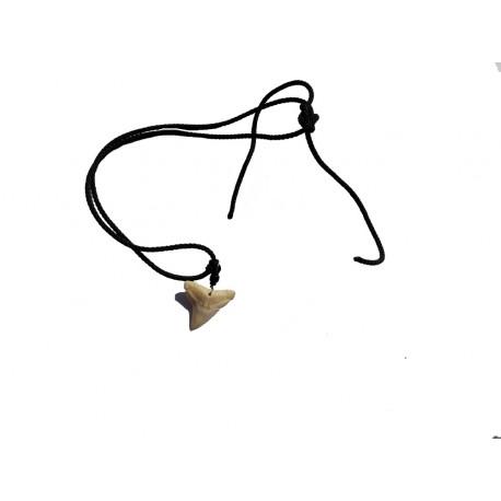 Collier véritable dent de requin sur cordon noir avec 3 mini perles noires