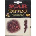 2 plaies tatouages temporaires cicatrices effet cinématographiqu