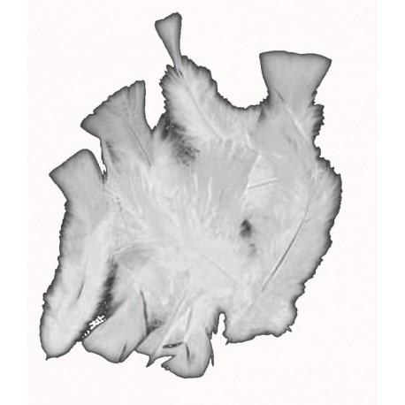 sachet-de-20gr-de-plumes-blanches-plumes-veritables
