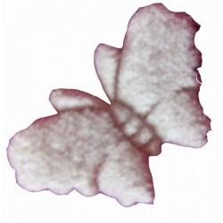 1-papillon-en-velours-ivoire